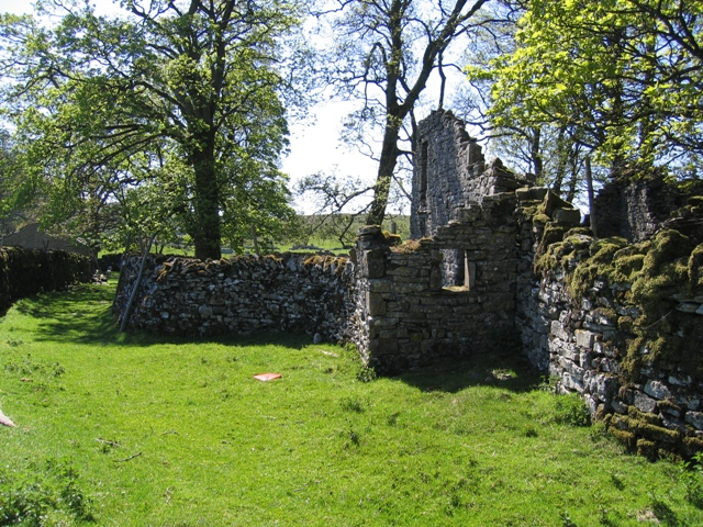Ruined house at Thorns and baby owl