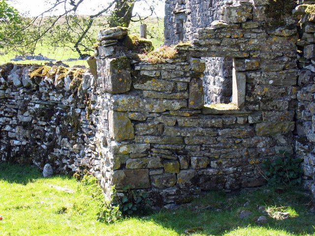 Part of the ruined house at Thorns and a baby owl