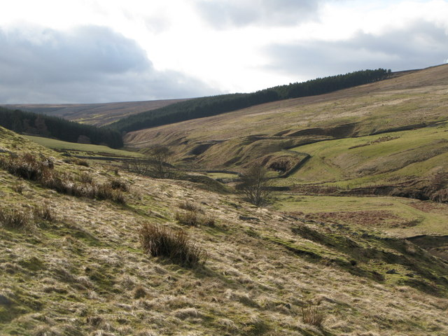 Disused mine workings in the valley of Nookton Burn