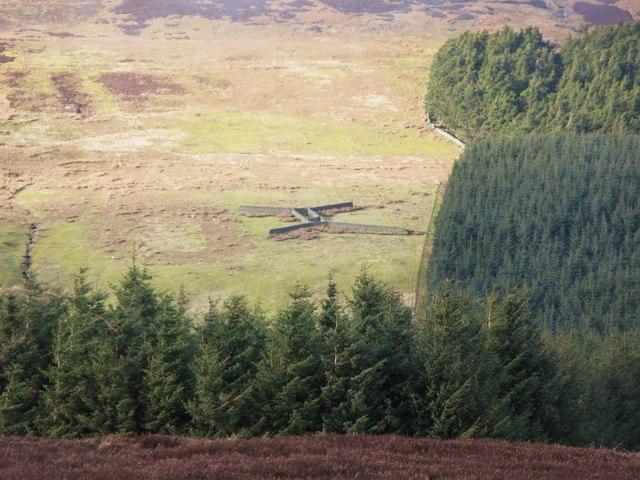 Unusual sheepfold above Nookton Burn