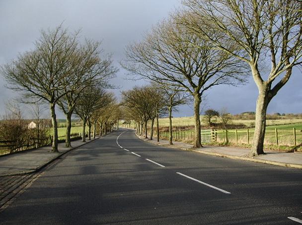 Old Kiln Lane