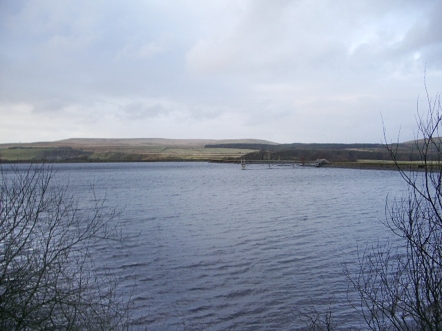 Springs Reservoir, Belmont