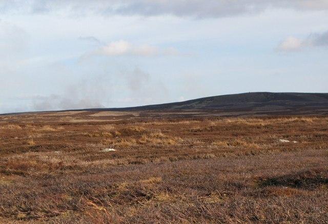 Lowdon's Flat