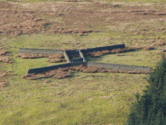 Unusual sheepfold above Nookton Burn - close-up