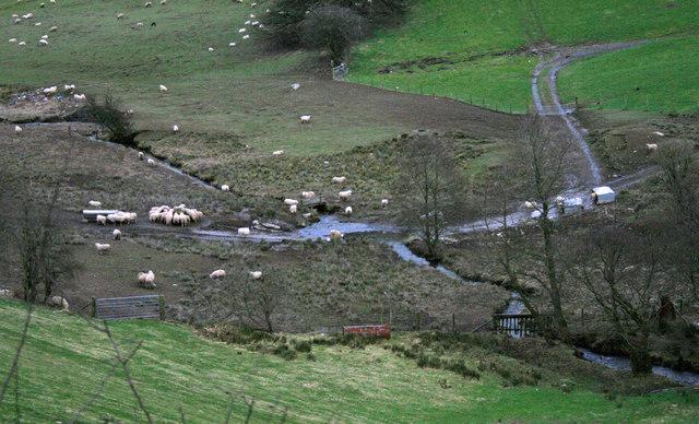Afon Ysgwennant