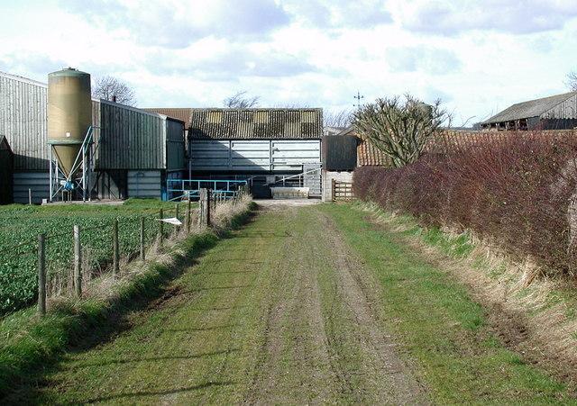 Brackendale Farm