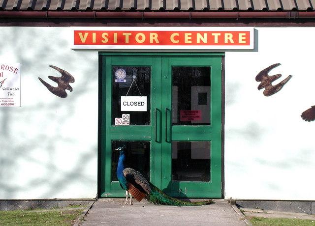 Park Rose Owl Sanctuary, Carnaby