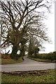 N4050 : Road Junction by kevin higgins