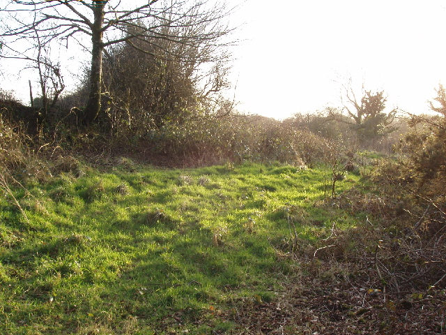 Scrubland by the River Ottery