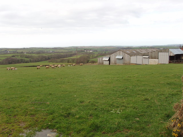 Kitleigh farm with sheep