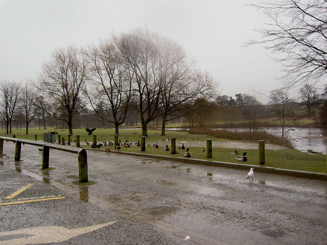 A bleak lunchtime at Cannon Hall Country Park