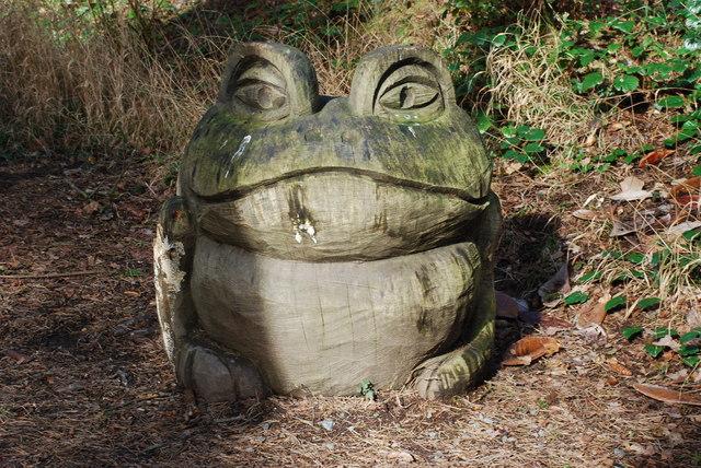 Broga Portmeirion Frog