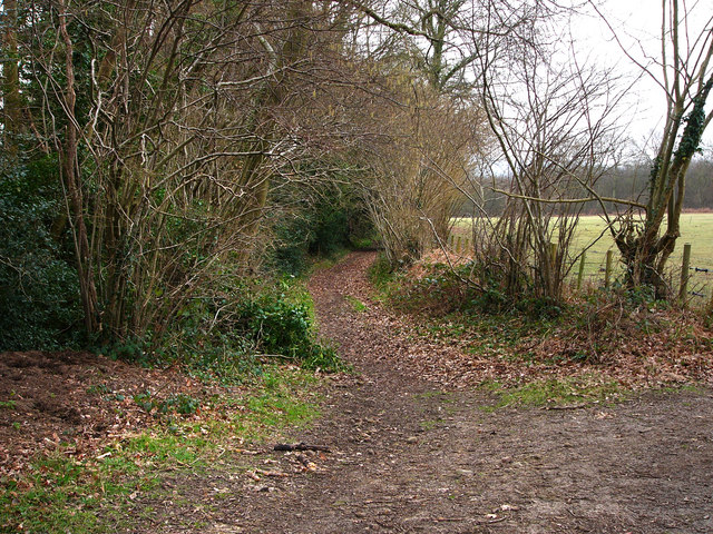Northern end of Cumbers Lane at Borden