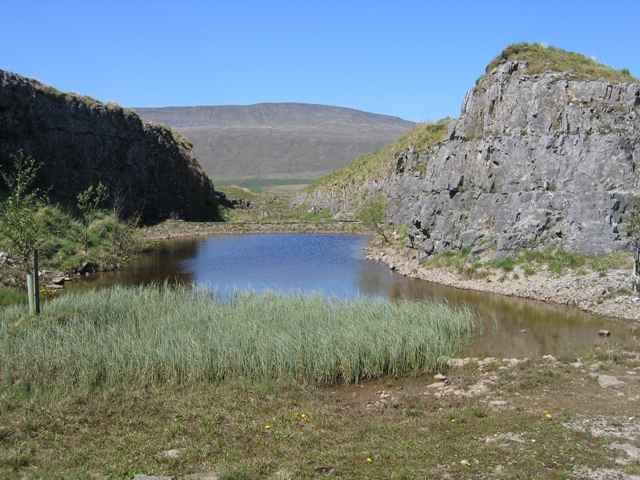 Pool at Ribblehead Quarry