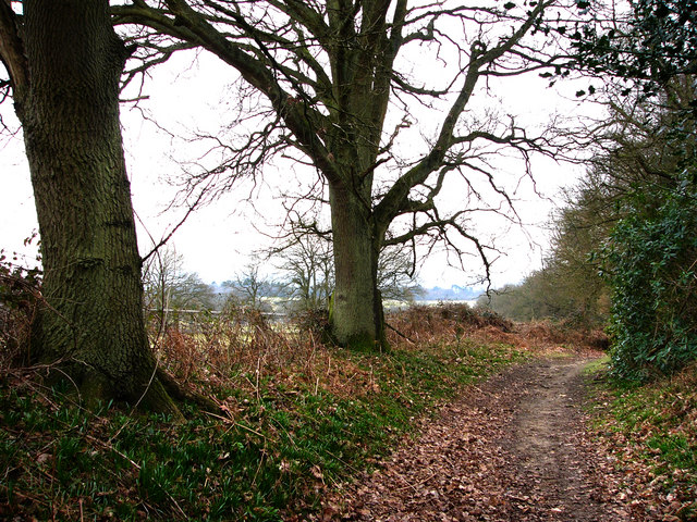 Cumbers Lane, near Borden