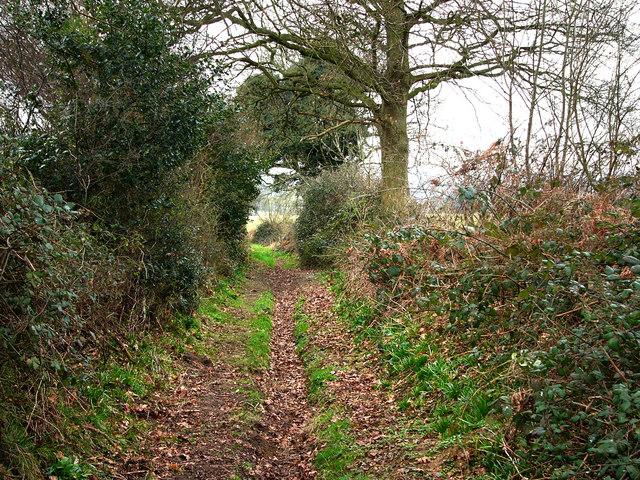 Cumbers Lane, south of Ship Copse