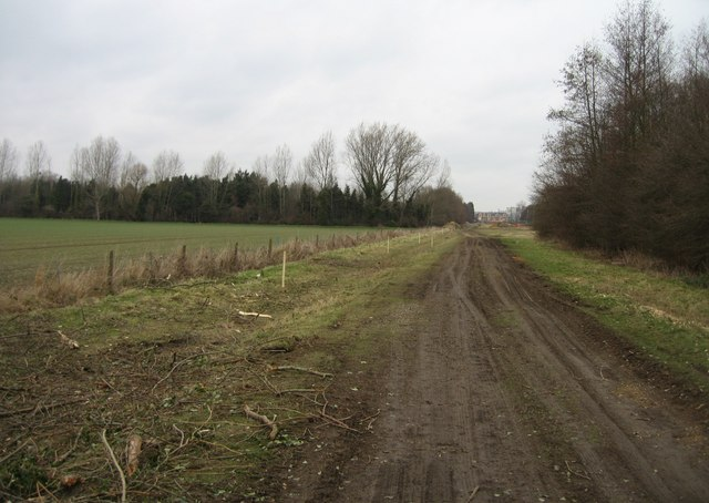 Varsity Line prepares for 'Guided Busway'