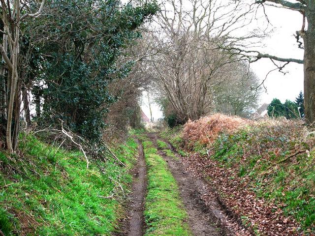 Cumbers Lane, approaching Cumbers Farm