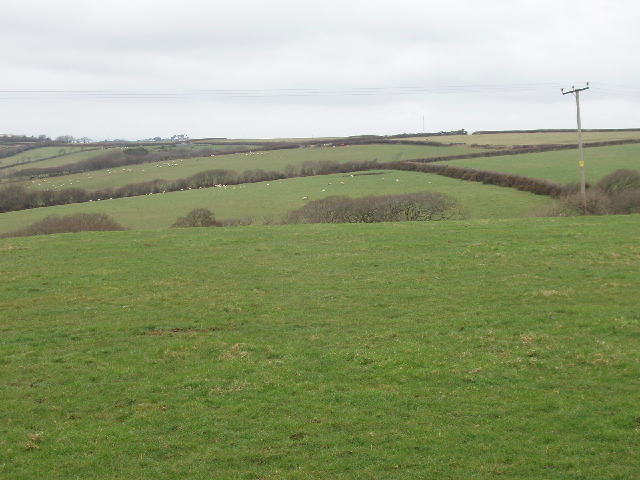 Fields by Rosmoran