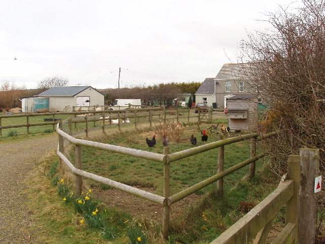 House and hen run by Small Hill Barton