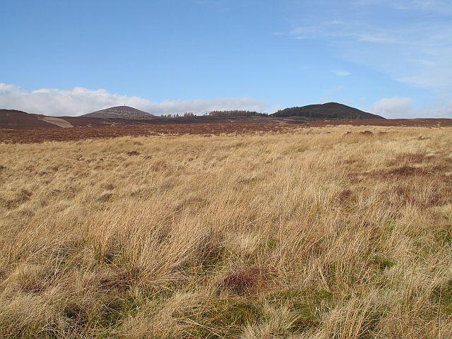 Moorland, west of Meall Mòr