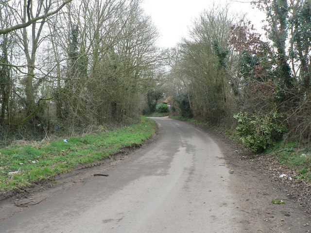 West Wellow: Scallows Lane