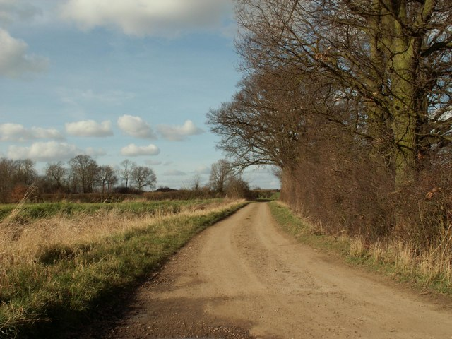 A view of Chippetts Lane from Chippetts Farm
