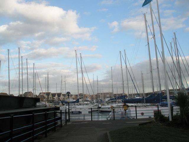 A full marina in February