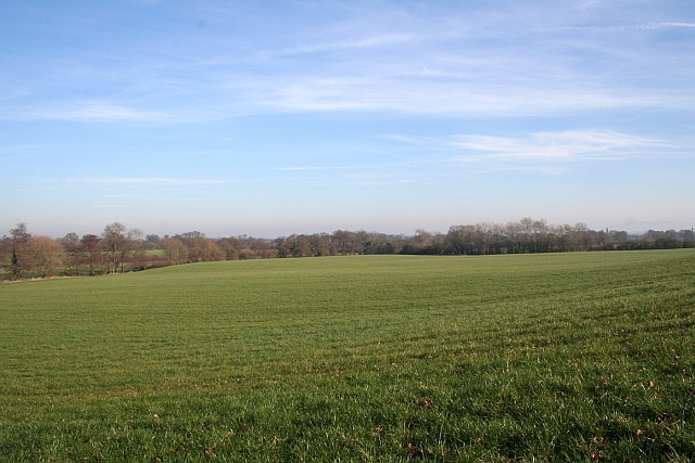 Field by the Mere Brook