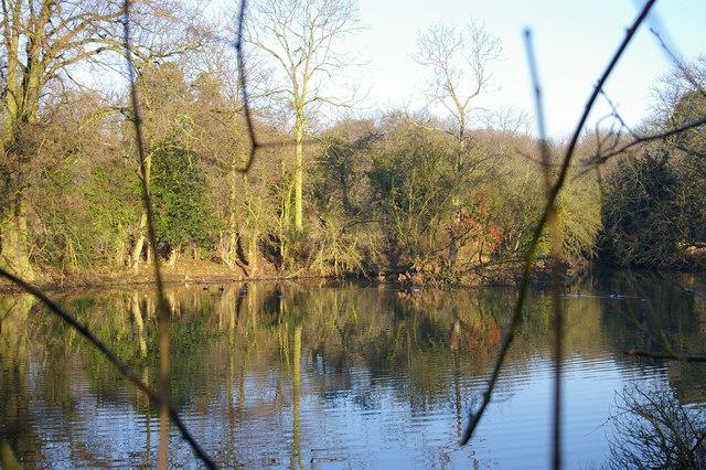 Lake near Tranby