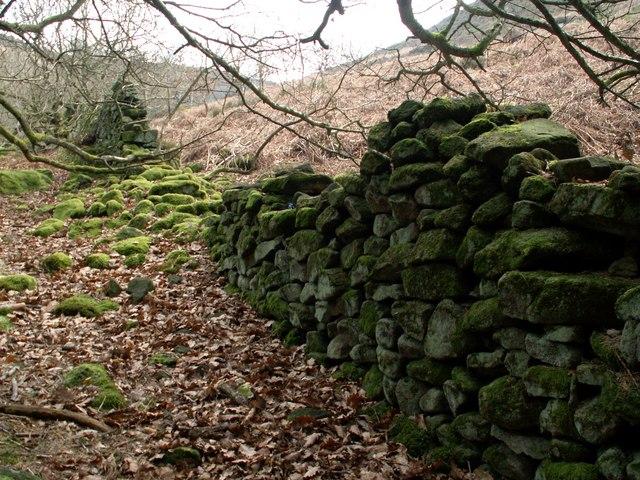 A boundary wall Bamford Moor