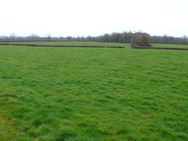 Farmland near Hornblotton Somerset