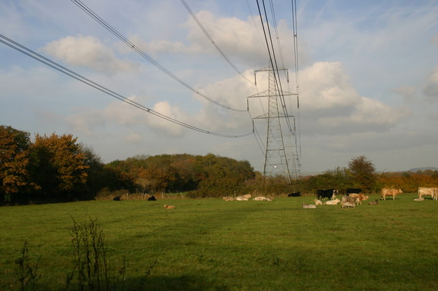 Electricity Pylons by Baker's Spinney