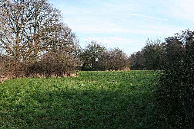 Meadow near Tuck Mill