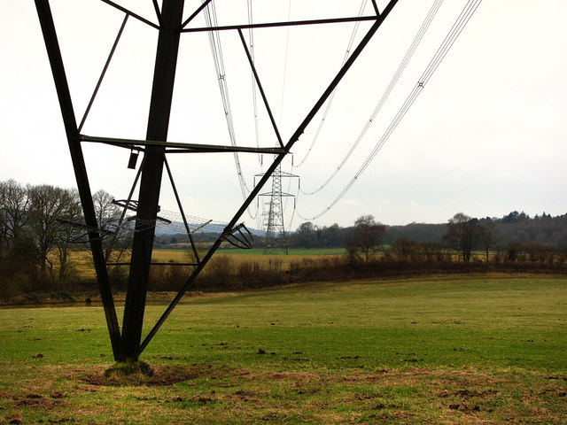 Pylons north of Chithurst