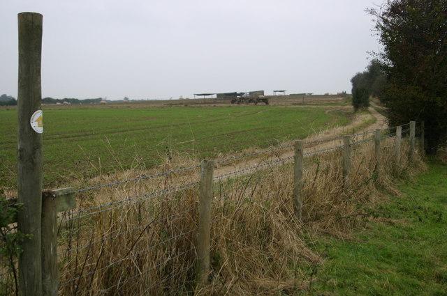 The Bernwood Way crosses the farm track