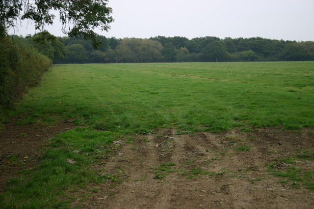 Hell Coppice