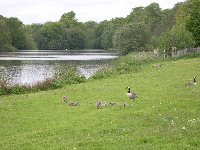 TheLake at Sudbury Hall