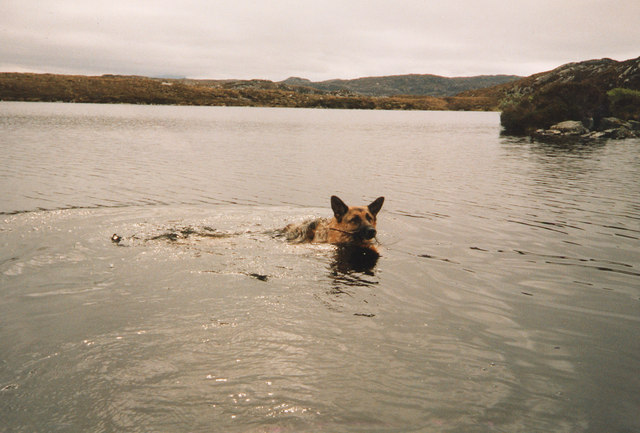 Lochan with no name, with Sasha swimming