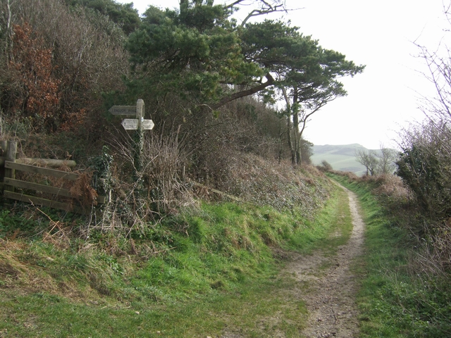 Pettycrate Lane, Langdon Wood