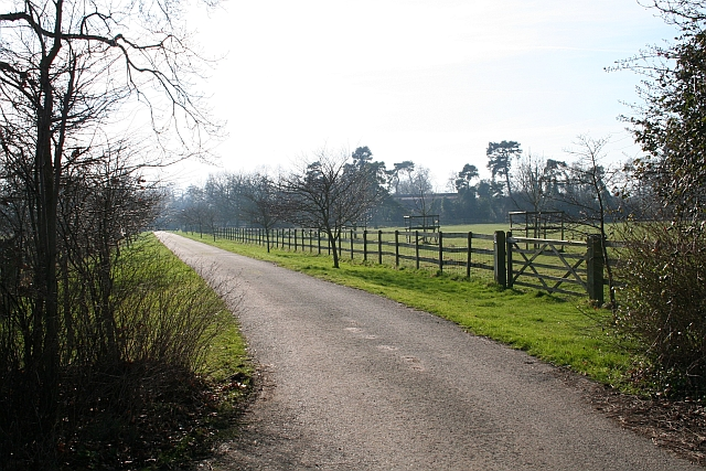 The Driveway to Hanley Hall