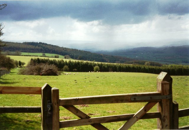 Offa's Dyke Path south of Beacon Ring