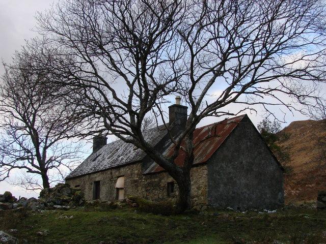 Professor's Cottage