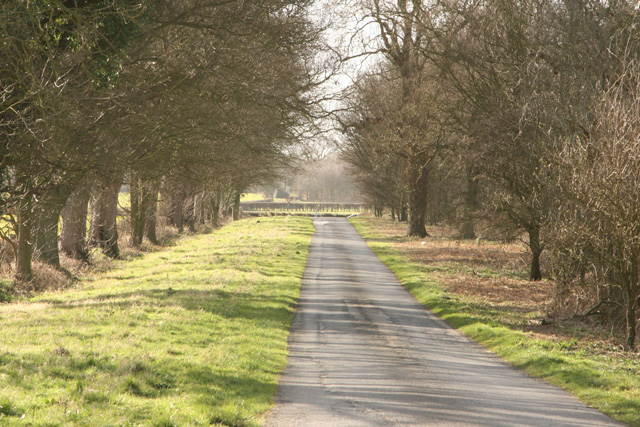 Lane's End near Holme-on-the-Wolds