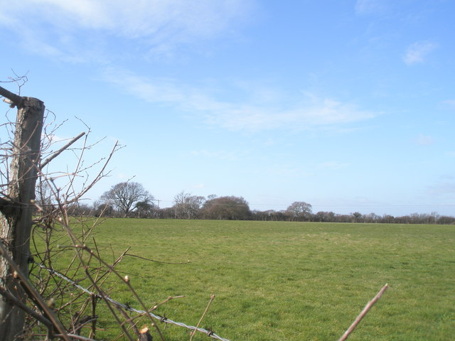 Field to north west of West Lane