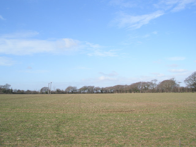 Field near West Lane
