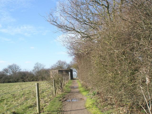 Muddy path near the coast at North Hayling