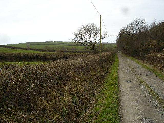 Fields in Poundstock
