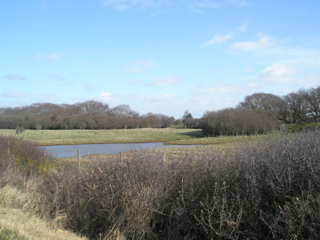 Looking inland along the Hayling Billy Trail