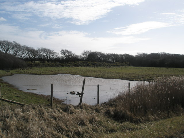 Inland pool adjacent to the old Hayling Billy Line